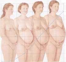 cambios durante el embarazo