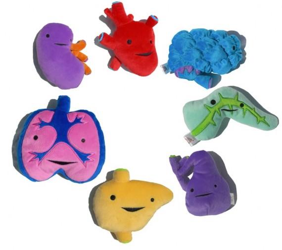 Peluches con formas de organos