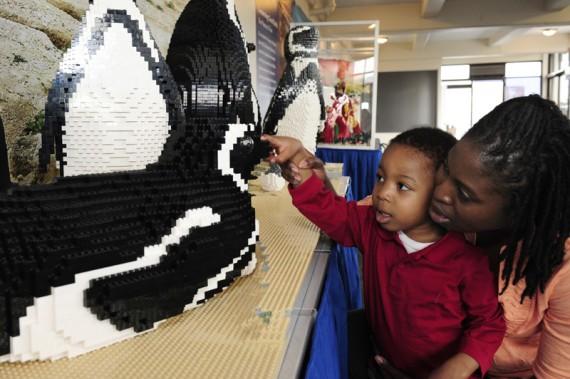 Zoo armado con Lego