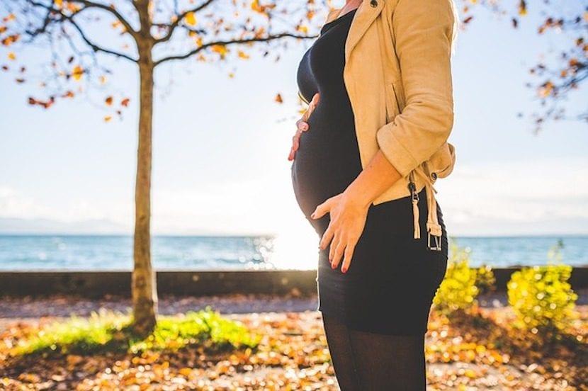 mujer embarazada posando