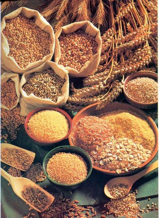 Introducción de nuevos alimentos: los cereales integrales