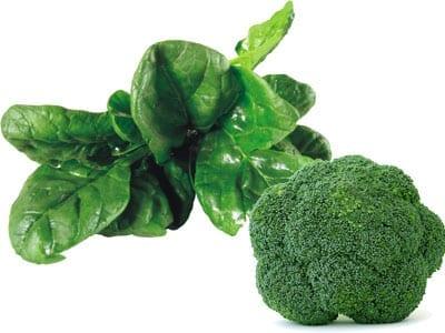 Alimentos saludables para el bebé. Verduras de hoja verde y brócoli