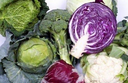 Introducción de nuevos alimentos: verduras crucíferas