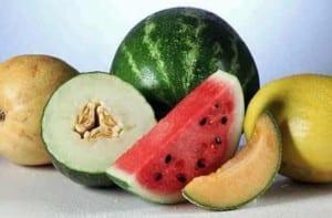 La sandía y el melón en el embarazo