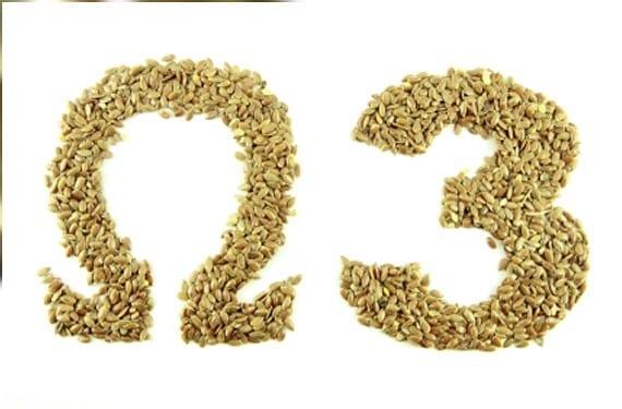 Ácidos omega 3 en el embarazo