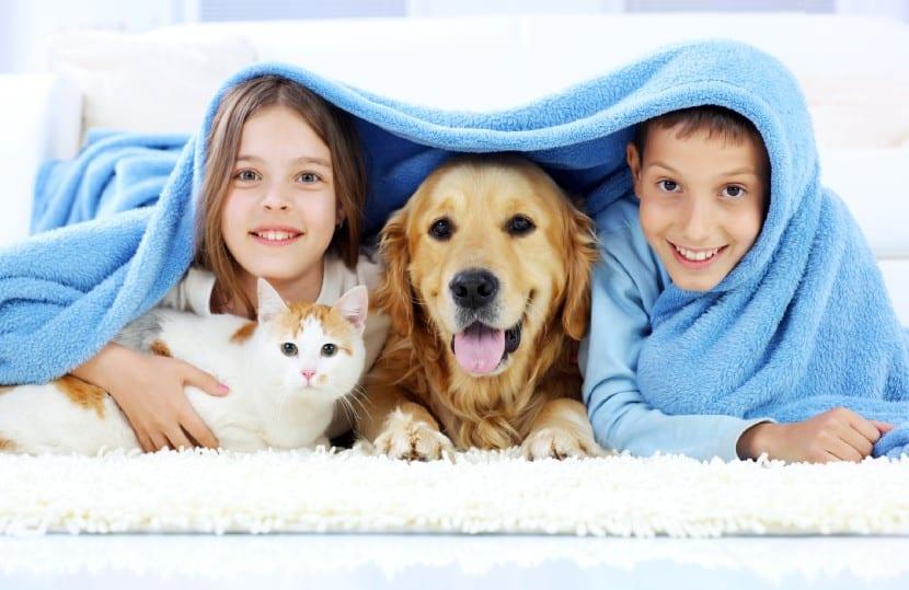 Los animales y los niños