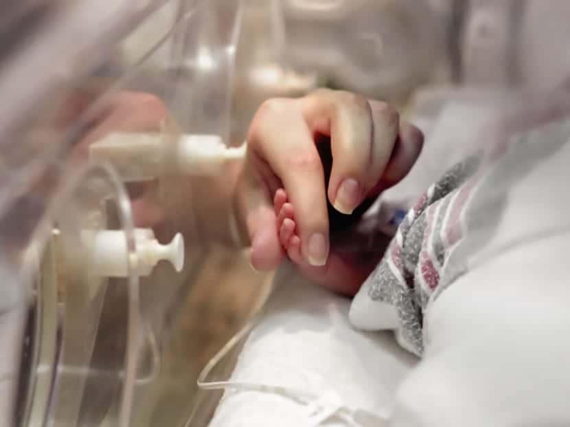 La incubadora