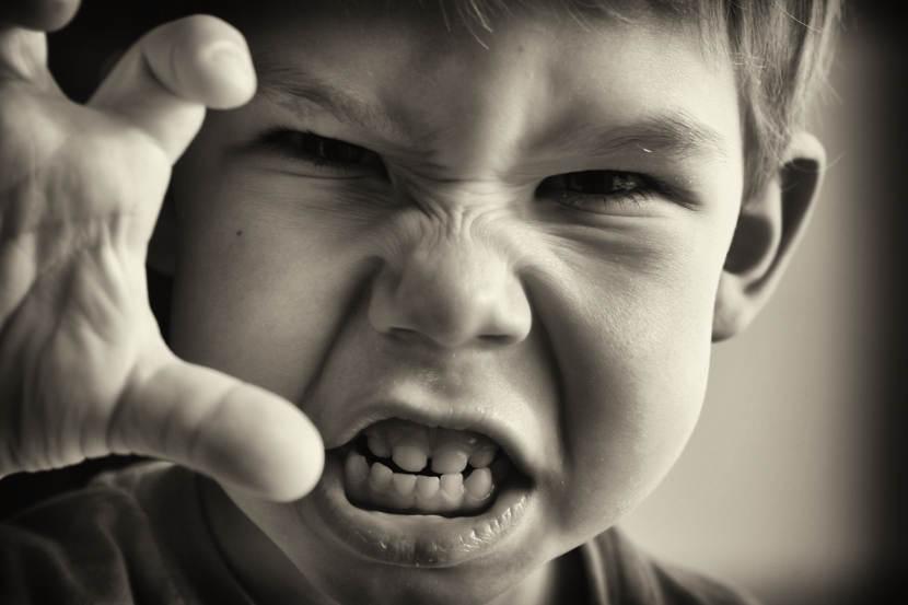 El omega-3 podría prevenir la conducta agresiva en los niños, según un estudio