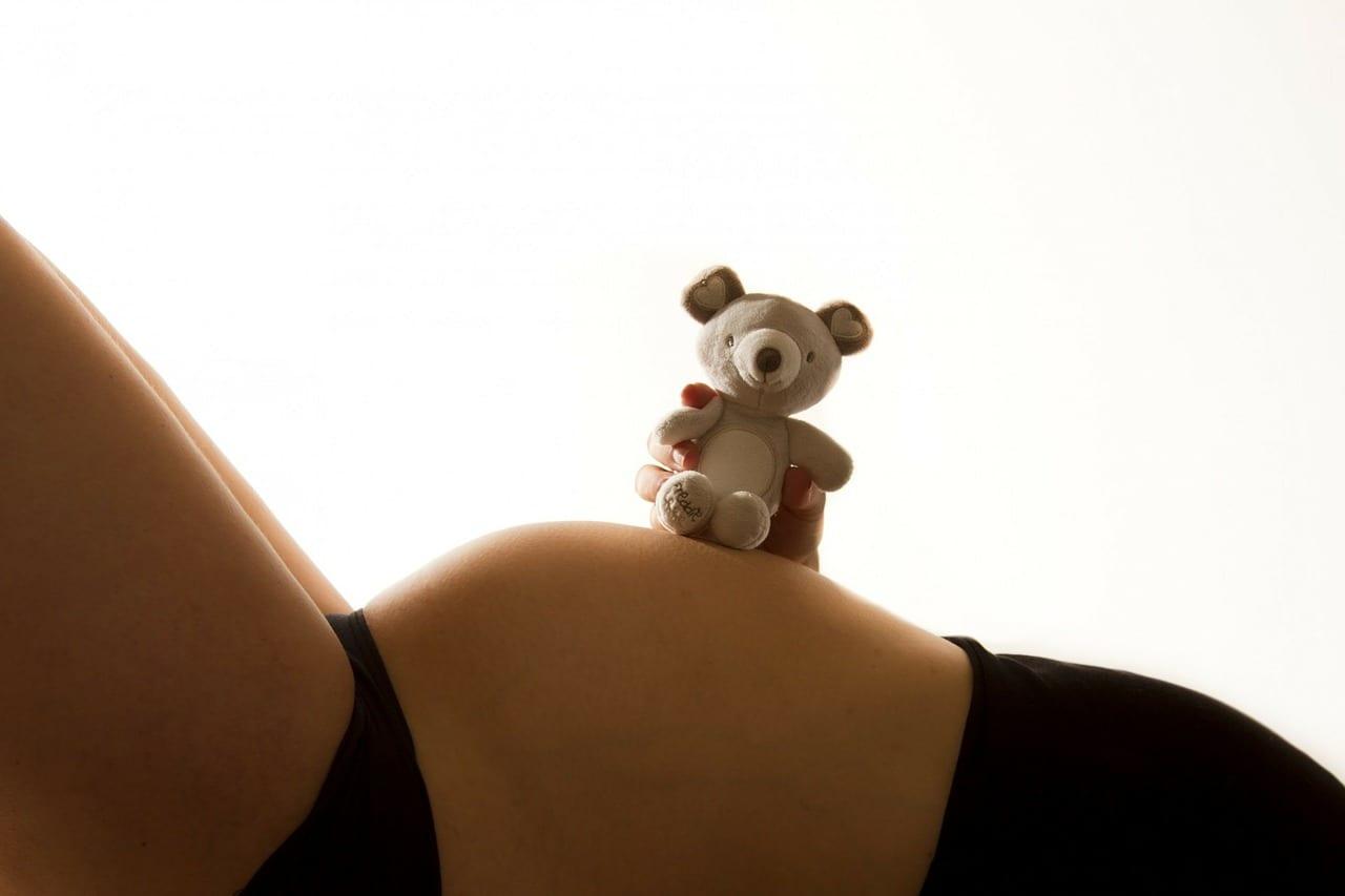 Necesidades nutricionales embarazo