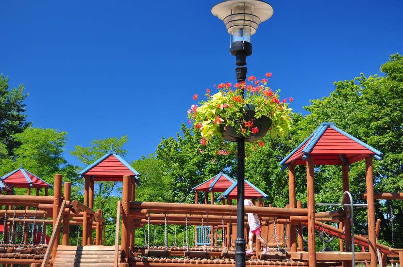 Los espacios verdes mejoran el desarrollo cognitivo de los niños