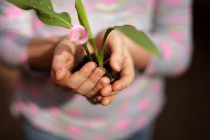 4 claves para educar a tus hijos en Inteligencia Emocional