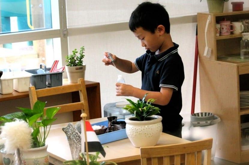 alumno en escuela montessori cuidando plantas