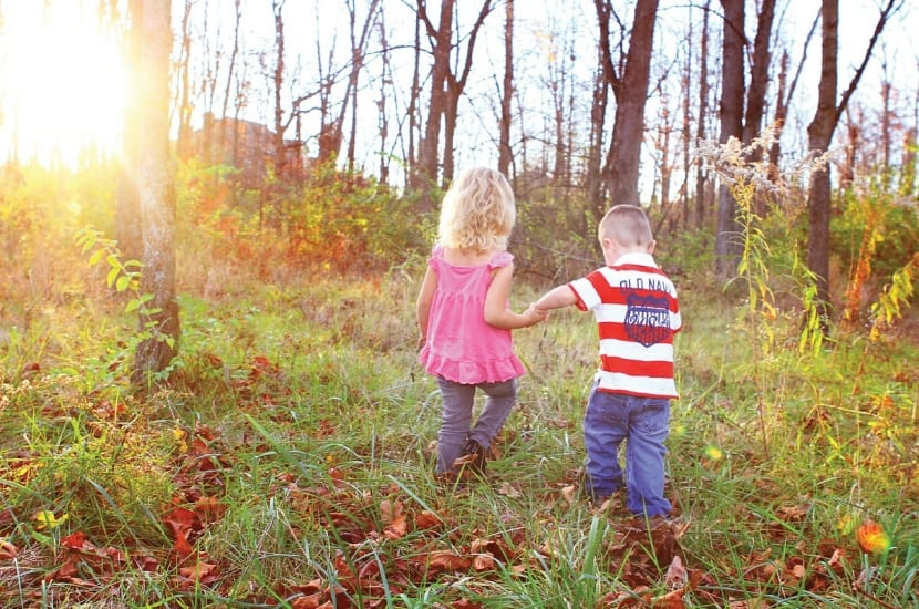 niños de la mano caminando por bosque