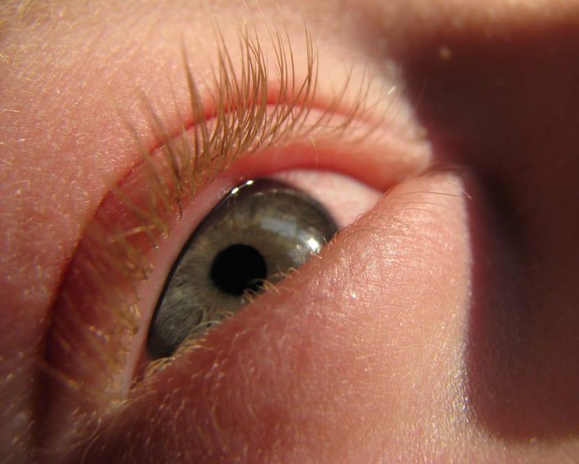 ¿Qué sabes sobre la anafilaxia?