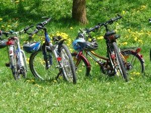 Otoño de bicicletas en familia, ¿te atreves?