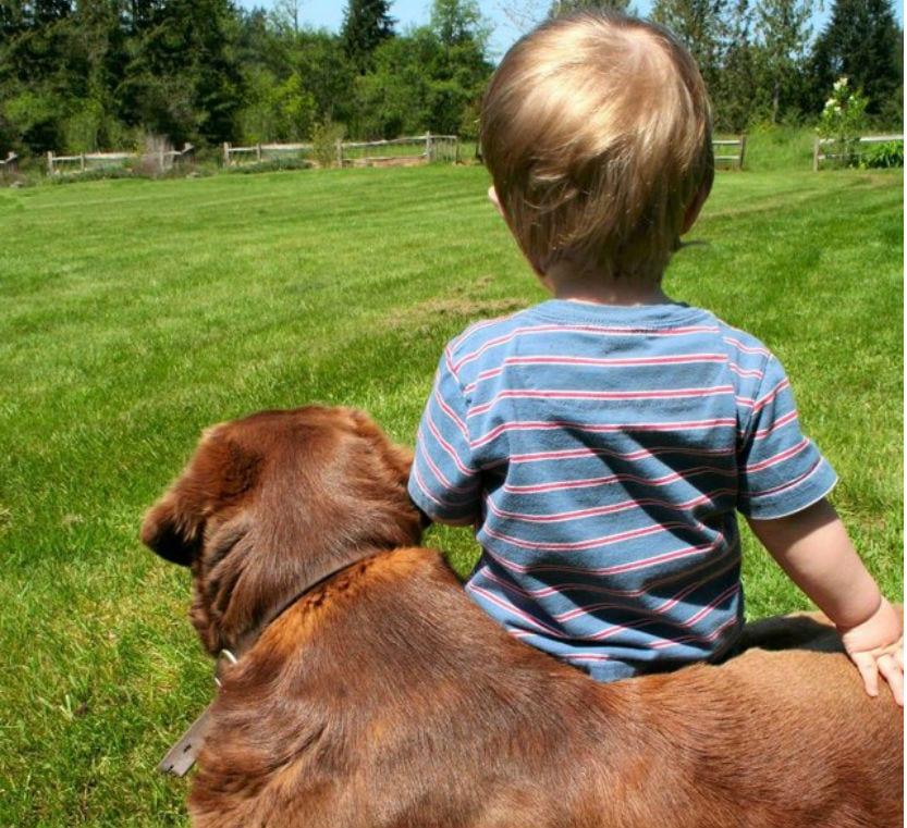 nino con su perro
