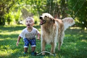 Beneficios de tener mascota
