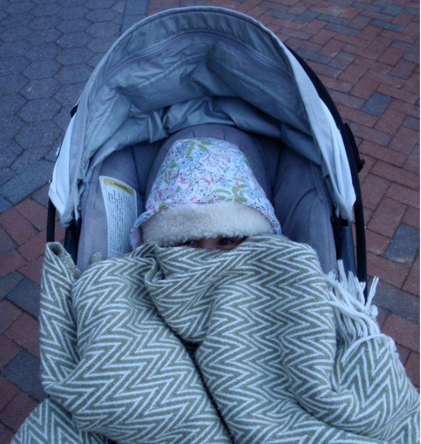 carrito-y-frio