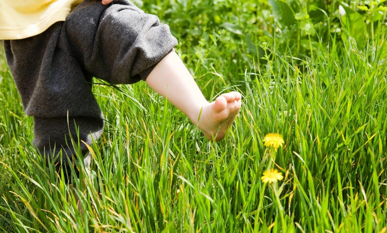 Los bebés descalzos desarrollan mejor el pie