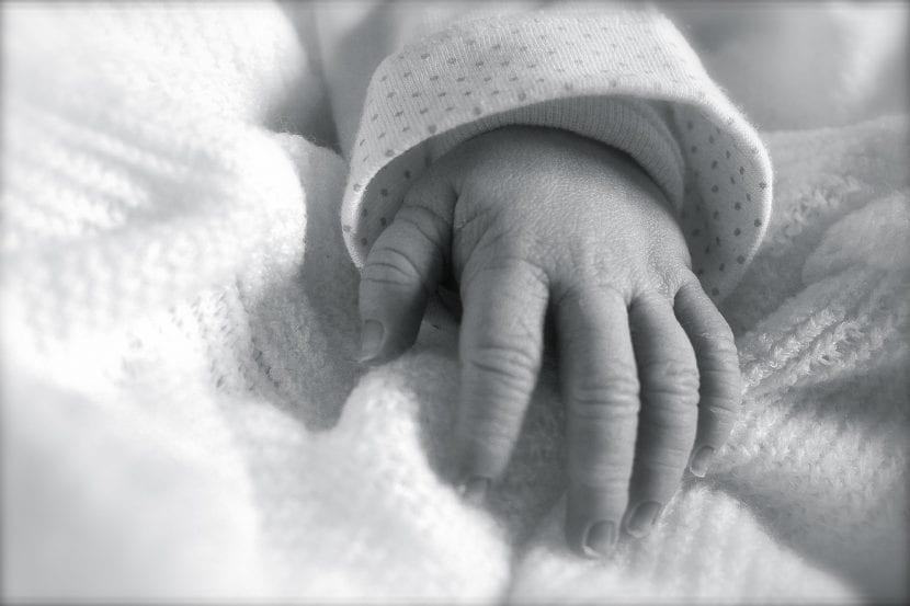 duelo gestacional y perinatal