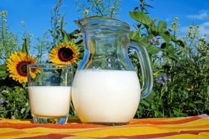 alternativas ala leche de vaca jarra de leche