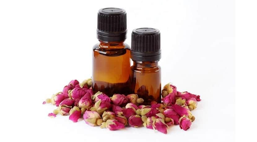 prevenir la aparición de estrías rosa mosqueta