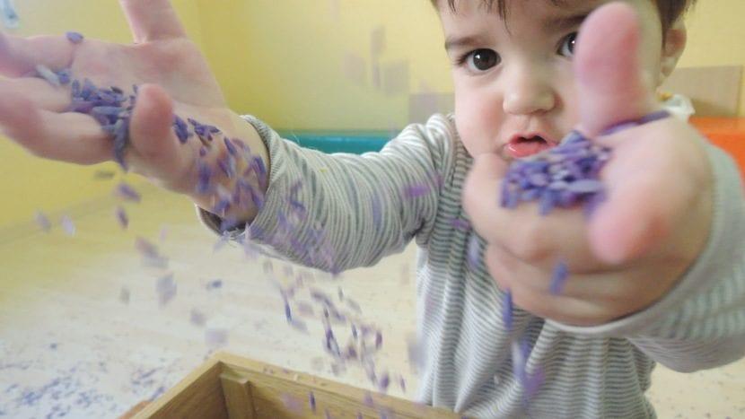 Niño jugando con bandeja de experimentación con arroz
