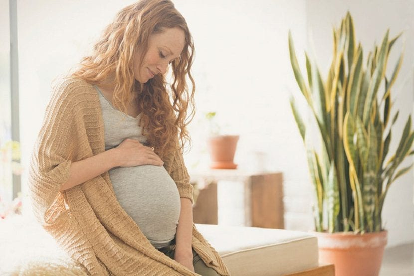 Segundo trimestre del embarazo