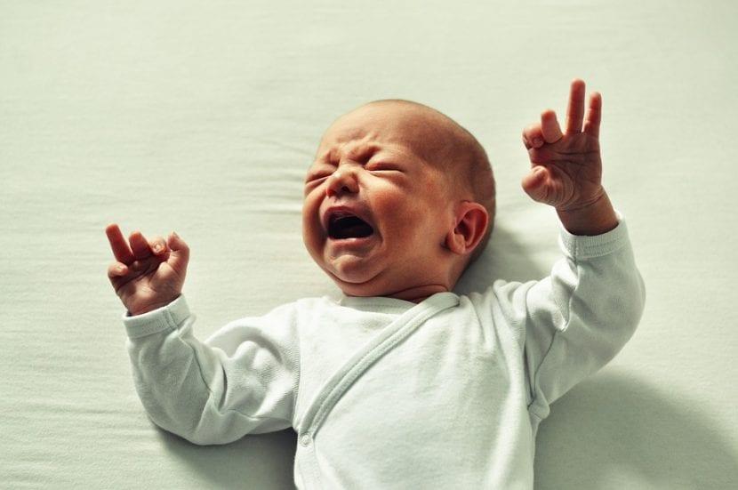 Bebé llora buscando consuelo en sus padres