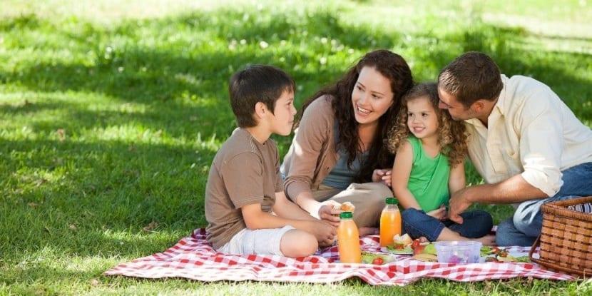 Familia de picnic