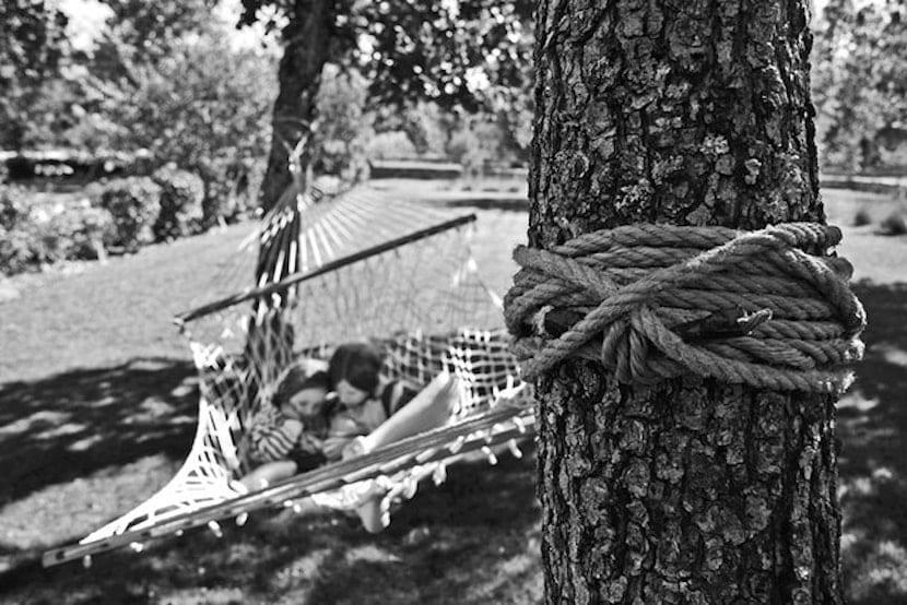 Personas tumbadas en la hamaca entre los árboles