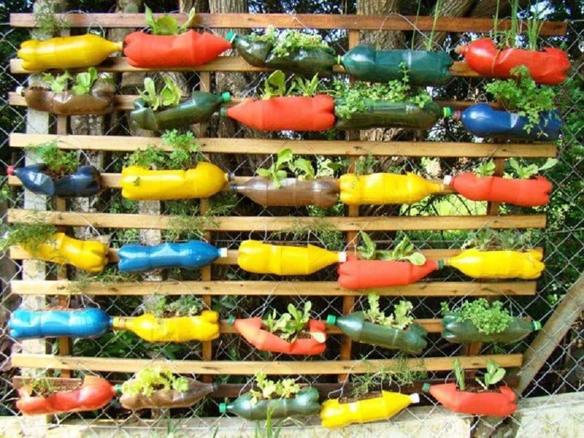 Jardín vertical de colores