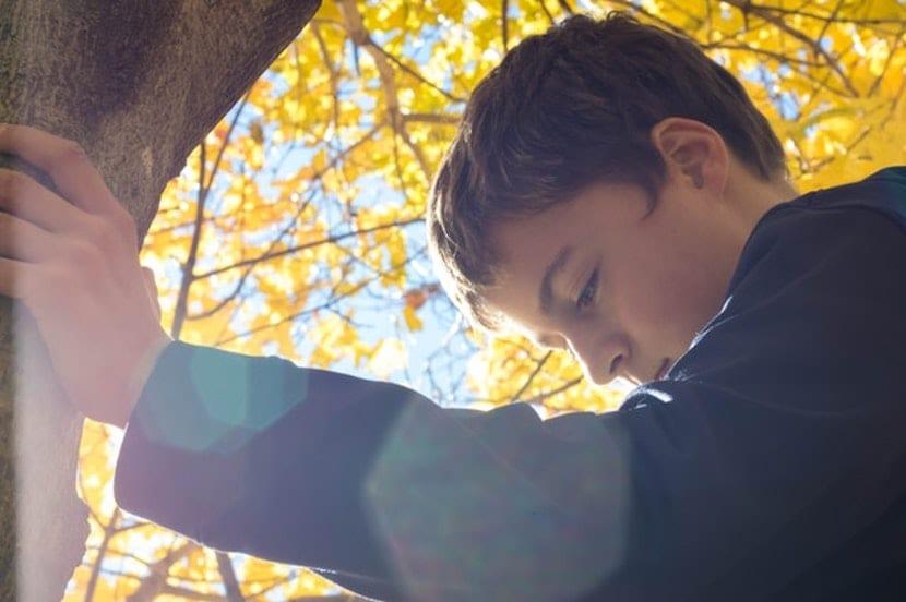 Niño abrazado a un árbol