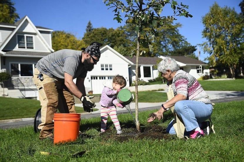 Plantando un árbol en familia