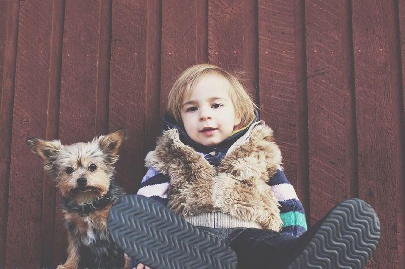 beneficios criar niños y mascotas juntos