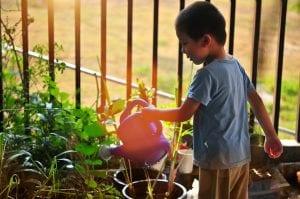 Niño riega un jardín de una casa rural.