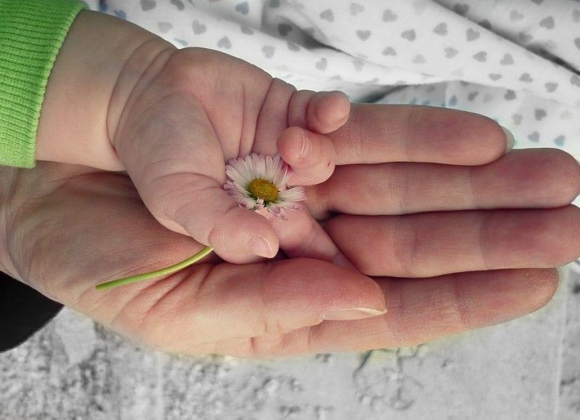 Madre e hijo juntan sus manos antes de acostarse y en un momento de unión previa lactancia materna.