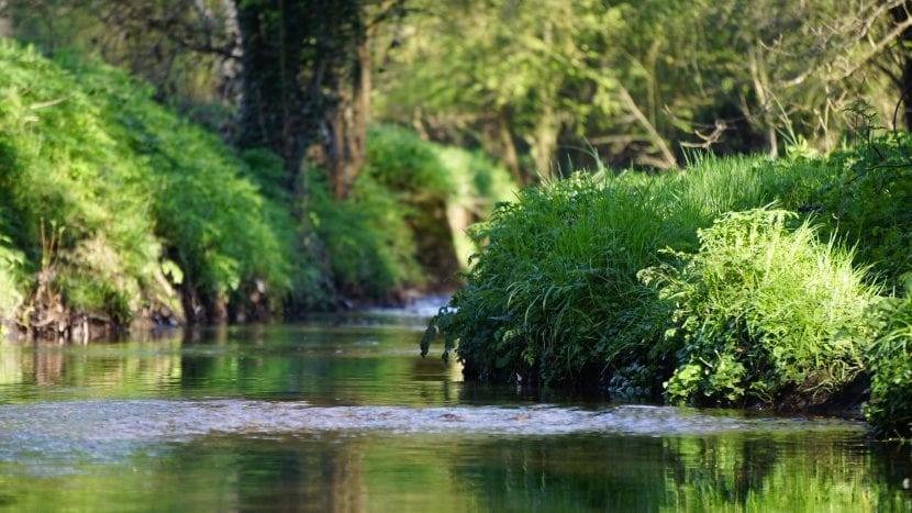 senderismo por el río