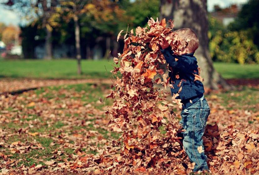 Actividades para disfrutar del otoño en familia