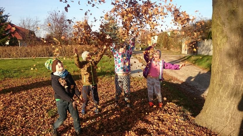 Actividades de otoño
