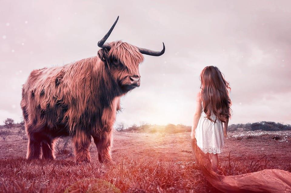 Niña sueña con ser una guerra que planta cara a una bestia.