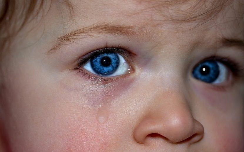 Niño llorar ante el sentimiento de estrés y cambios vividos.