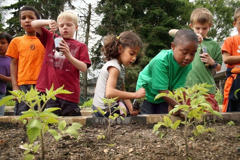 Niños trabajando en un pequeño huerto