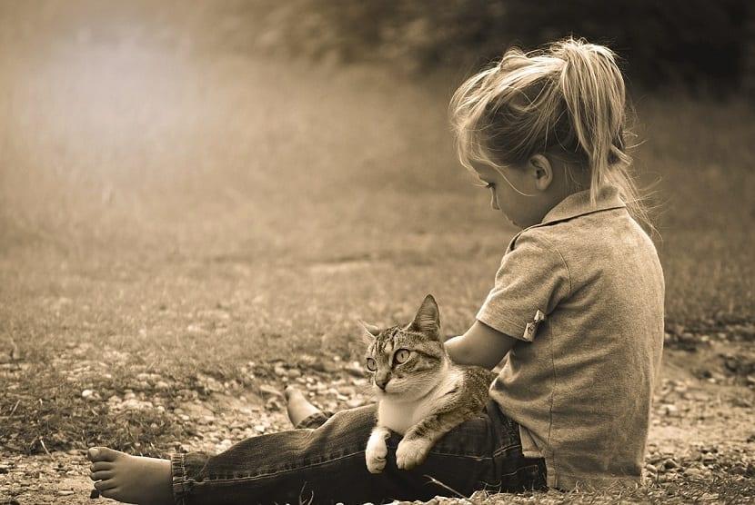 Una niña con su gato