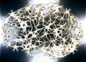 cambios cerebro madre