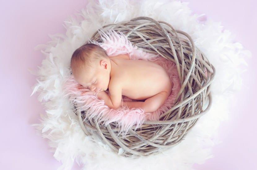 sesion de fotos de bebe en nido