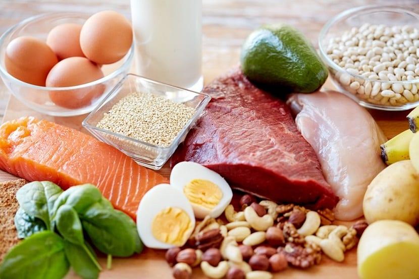 Las mejores proteínas de origen animal y vegetal
