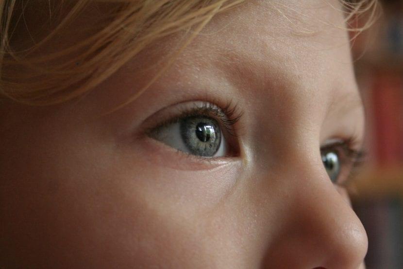 Mirada de un niño inteligente, despierto y ávido de conocimiento.