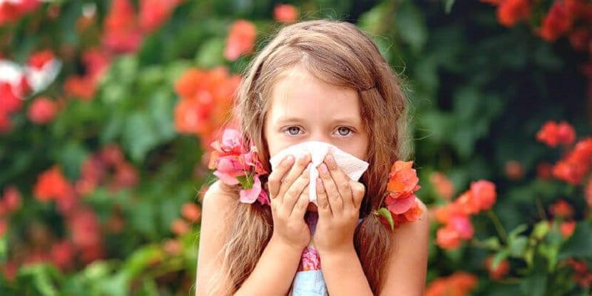 Alergia primaveral en niños