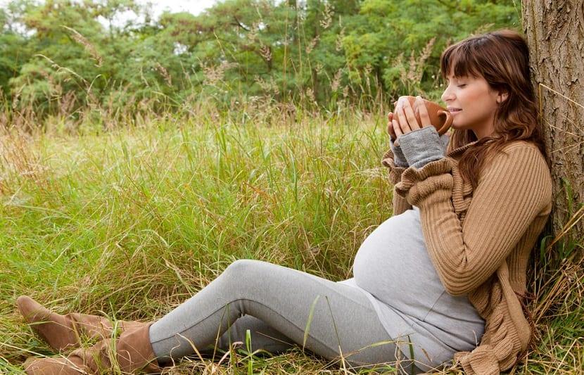 Mujer embarazada tomando té en el bosque